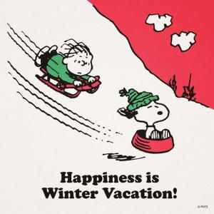 The Joyful Winter Vacation